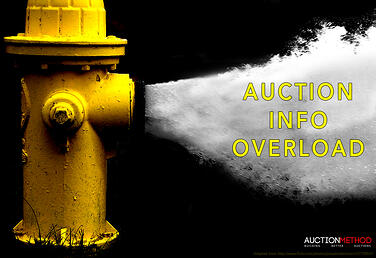Fire Hydrant - Auction Info Overload